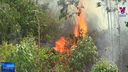 Đà Nẵng huy động các lực lượng khống chế cháy rừng