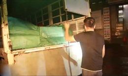 Bắt giữ xe tải vận chuyển 2,8 tấn chân gà lậu