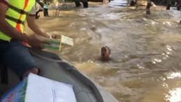 Xót xa hình ảnh cậu bé bơi giữa dòng nước lũ để nhận đồ cứu trợ