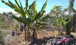 An Giang bắt giữ vụ buôn lậu 51kg kim loại nghi là vàng