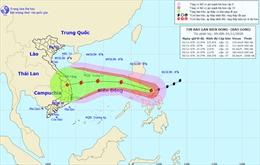 Siêu bão Goni giảm cấp sau khi đi vào miền Trung Philippines