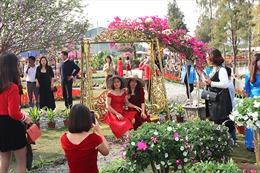 Nghỉ Tết Dương lịch 2021, người dân thích thú 'check in' Lễ hội hoa Xuân Quan