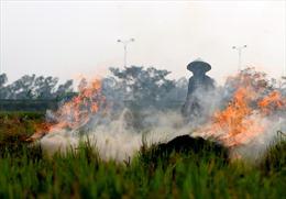 Hà Nội: Nông dân vẫn đốt rơm rạ sau khi thu hoạch, khói phủ trắng ruộng đồng