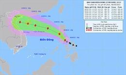 Thời tiết ngày 8/9: Bắc Bộ và Trung Bộ mưa lớn, Tây Nguyên và Nam Bộ có mưa rào và dông