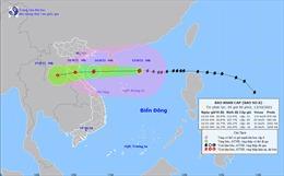 Thời tiết ngày 13/10: Bão số 8 gây mưa rất to từ Thanh Hóa đến Quảng Bình