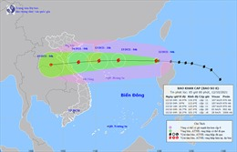 Thời tiết ngày 12/10: Bão số 8 đi vào biển Đông có khả năng mạnh thêm