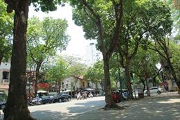 Thời tiết ngày 16/9: Khánh Hòa, Ninh Thuận, Bình Thuận, Nam Tây Nguyên và Nam Bộ mưa rất to