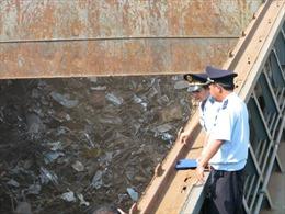 Đã có quy chuẩn kỹ thuật quốc gia về môi trường đối với phế liệu nhập khẩu