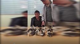 Bắt đối tượng vác 10kg thuốc phiện ở rừng Mường Nhé