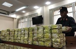 Những vụ án ma túy cực lớn bị phát hiện, bắt giữ gần đây