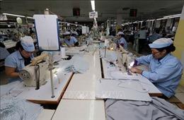 'Doanh nghiệp nhờ thu thuế xuất nhập khẩu' giúp giảm nhiều chi phí