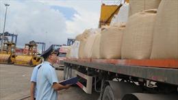 Lo ngại sợi nhập khẩu từ Ấn Độ và Trung Quốc bán phá giá