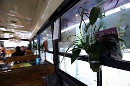 Hạn chế dùng mạng wifi công cộng, quán cafe để giao dịch ngân hàng online