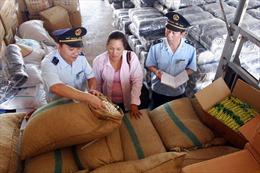 Tăng cường chống gian lận xuất xứ, chuyển tải hàng hóa bất hợp pháp