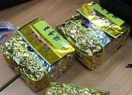 Bắt giữ vụ vận chuyển trái phép 13 kg ma tuý đá và tàng trữ 1.000 viên thuốc lắc