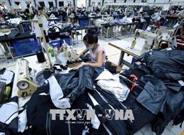 Chuẩn bị lộ trình cắt giảm thuế sau khi EVFTA có hiệu lực