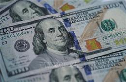 Giá USD tăng, Ngân hàng Nhà nước đủ công cụ giữ ổn định tỷ giá