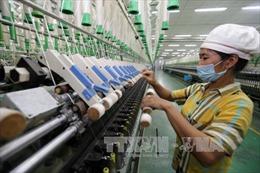 Kiểm toán chống 'lỗ giả, lãi thực' của doanh nghiệp FDI