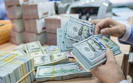 Mức tổn thương về rửa tiền trong bảo hiểm được đánh giá là thấp
