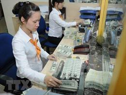 Dự trữ ngoại hối tăng kỷ lục, an ninh tài chính quốc gia thêm vững