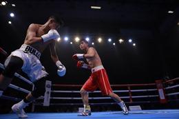 Hấp dẫn giải boxing Victory8
