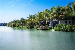 Không gian sống giao hòa cùng thiên nhiên của biệt thự đảo Ecopark