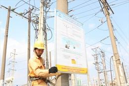 Long An: Tăng cường bảo vệ hành lang an toàn lưới điện cao áp