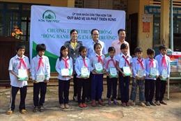 Kon Tum: Mở rộng nguồn thu phục vụ công tác bảo vệ, phát triển rừng bền vững