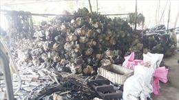 Ô nhiễm môi trường ở làng Tề Lỗ chưa được xử lý dứt điểm