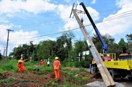 Điện lực Đồng Tháp không ngừng nỗ lực phục vụ tốt nhu cầu phát triển kinh tế - xã hội
