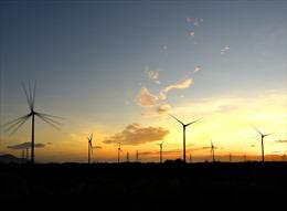 Trungnam Group đứng đầu trong năng lượng sạch
