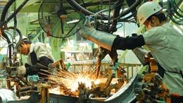 Doanh nghiệp giấy phát triển bền vững từ ba góc nhìn kinh tế, môi trường và xã hội
