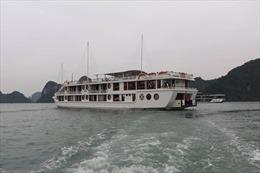 Cùng du thuyền Calypso Cruises thăm quan vịnh Lan Hạ