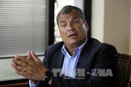 Tòa án Ecuador ra lệnh bắt giam cựu Tổng thống Rafael Correa