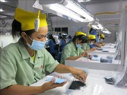 Doanh nghiệp Việt vẫn 'mò mẫm' trong hành trình chiếm lĩnh thị trường ASEAN