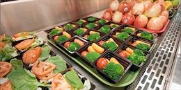 Cung cấp bữa ăn miễn phí thân thiện môi trường tại các trường học Seoul