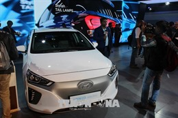 Hyundai Motor - ngôi sao đang mất dần ánh hào quang
