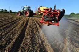 Hàng chục nông dân bị ngộ độc, Pháp cấm vĩnh viễn thuốc trừ sâu chứa metam sodium