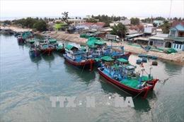 Việt Nam cam kết hướng đến phát triển nghề cá có trách nhiệm và bền vững