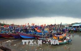 Phó Thủ tướng chỉ đạo theo dõi chặt diễn biến bão số 3 để chủ động ứng phó