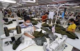 Một số mặt hàng Việt Nam xuất sang EAEU có thể bị tăng thuế