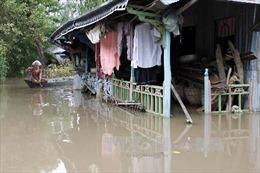 Lũ đầu nguồn sông Cửu Long lên nhanh, nguy cơ ngập lụt