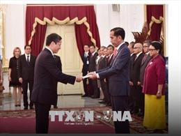 Hiện thực hóa cơ hội mới trong quan hệ Việt Nam - Indonesia