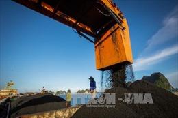 TKV điều chỉnh kế hoạch sản xuất để khai thác đủ than cho các nhà máy nhiệt điện
