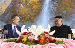 Xúc tiến tổ chức hội đàm Quốc hội hai miền Triều Tiên vào tháng 11 tới