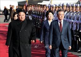 Khả năng nhà lãnh đạo Triều Tiên tới thăm Seoul vào tháng 12 tới