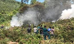 Cháy trên bán đảo Sơn Trà, Đà Nẵng