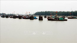Thái Bình cấm tàu, thuyền ra khơi, ứng phó với bão Mangkhut