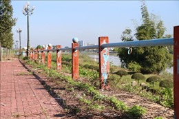 Kon Tum: Hàng trăm thanh sắt lan can bờ kè sông bị tháo trộm, mang bán sắt vụn