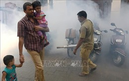 Báo động đợt bùng phát dịch bệnh Zika lớn nhất Ấn Độ